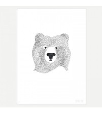 SEVENTY TREE BEAR OF FEW WORDS PRINT