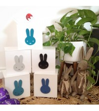 MINI BOY BUNNY BOX,